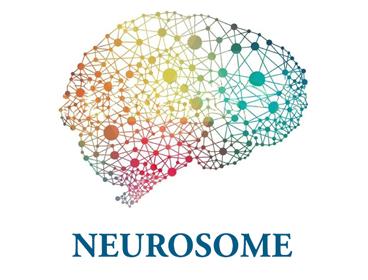 Neurosome